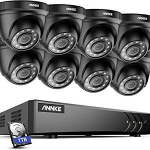 8 x Dome Cameras With 1TB DVR